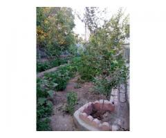 باغ ویلا در روستای دستگرد